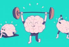 Нейроаэробика, ми жұмысы Ми қалай жұмыс істейді, Миға арналған жаттығулар, тренеровка для мозга, Мега мозг,