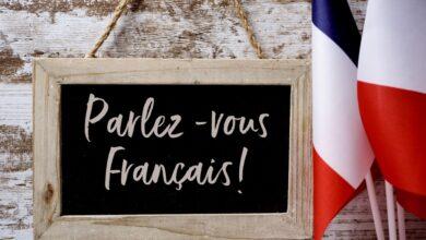 француз тілінің ерекшелігі